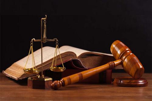 بیست درصد، سهم زنان در تدوین قوانین اساسی